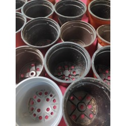 Free small plastic pots USED