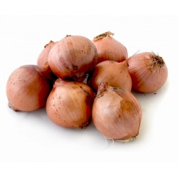ONIONS 1.10Kg approx FRESH VEGETABLES ECO