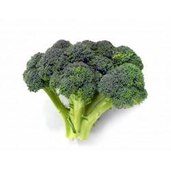 BROCCOLI between 0.400 and 0.800 Kg approx FRESH VEGETABLES