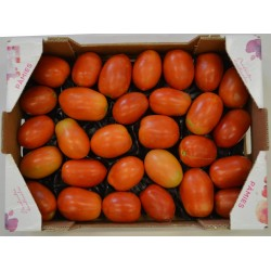 TOMATO PEAR 2.90 kg approx FRESH VEGETABLES
